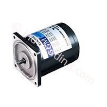 Induction Motors Ggm 60W