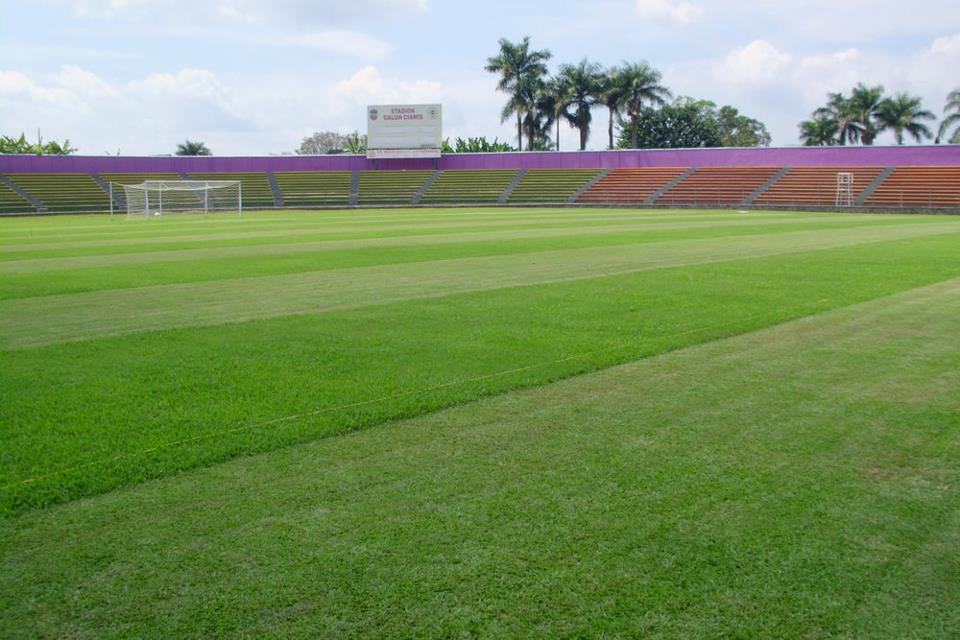 Jual Rumput Lapangan Sepak Bola Harga Murah Bandung Oleh