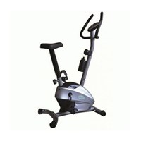 Magnetik Bike F 4206 Medium Silver 1