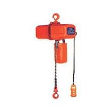 Electric Hoist Nitchi 500Kg