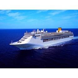 Dream Cruise  By Callista Tour
