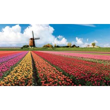 WH08-10 HARI SS WEST EUROPE HIGHLIGHT + KEUKENHOFF FROM RP.19.600.000 ++/PAX