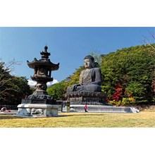 WH27 - 6D4N Summer Highlight Korea With New Destinations (Aug - Sep'17) Start From IDR 8.999.000 /pax Flight By: Asiana Airlines