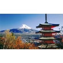 Super Value 5D4N Tokyo Fuji Tour @Hostel (Jul - Oct'17) Start From IDR 9.450.000 /pax Flight By: ANA Airlines