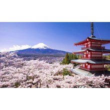 Land Tour 4D3N Tokyo With Choice Of Tour Special (Jul - Oct'17) Start From IDR 7.090.000 /pax