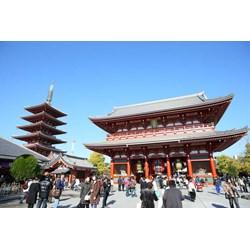 Hot Deal Land Tour 4D3N Tokyo Free & Easy Period 01 AUG - 31 DEC
