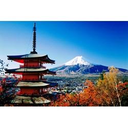 Hot Deal Land Tour 4D3N Tokyo Mt. Fuji Hakone Tour Period 01 AUG - 31 DEC