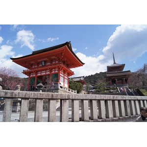 8D6N Spring Japan By GA Period Dep 17 Mar (WH01) IDR 26.990.000 /pax