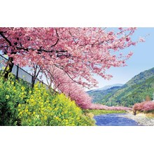 7D Relax Japan Sakura (Dep 28Mar/02Apr'18) WH35 All In Price IDR 20.900.000 /PAX Flight By: SINGAPORE AIRLINES