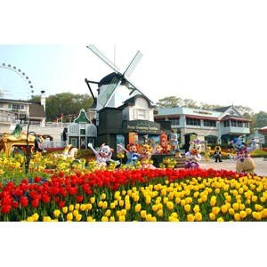 5D Fun Korea Everland Dep Mar-Apr'18 (WH35) Start From IDR 8.900.000 /PAX Flight By: ASIANA AIRLINES