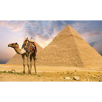 11D Mesir-Sharm E ...