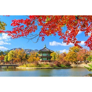6D4N New Romantic Korea Periode Jun - Sep'18 (WH04) All In Price IDR 13.400.000 /pax Flight By: ASIANA AIRLINES