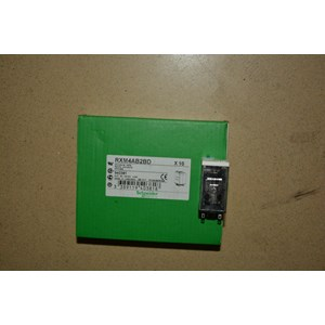 Miniature Relay Schneider RXM4AB2BD