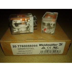 Relay Weidmuller DRM570730L