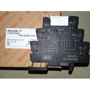 TRS 24VDC 1CO Weidmuller