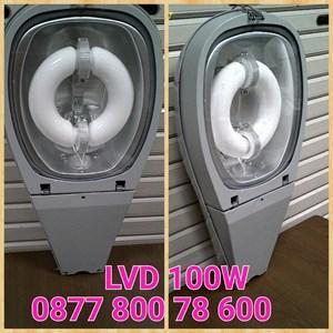 Lampu Jalan LVD 100W