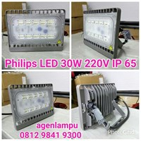 Lampu Sorot LED 30W Philips 1