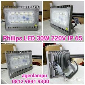 Lampu Sorot LED 30W Philips