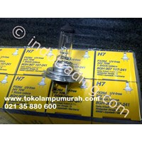 Hella Automotive Lamp H7 24V 70W 1