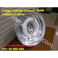 Induction Industrial Lamp 100W