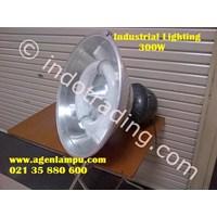 Induction Lamp Hdk 300Watt For Industrial