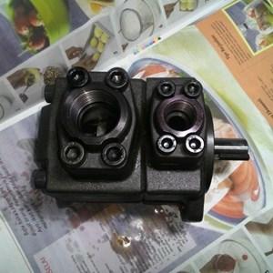 Dari Jaguar PV2R3 Hidrolik Vane Pump 3