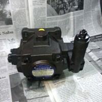 Distributor Jaguar HVVP Variable Vane Pump Hidrolik - VP3 3