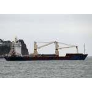 Container Ship BKI Class PGA-CJ082515