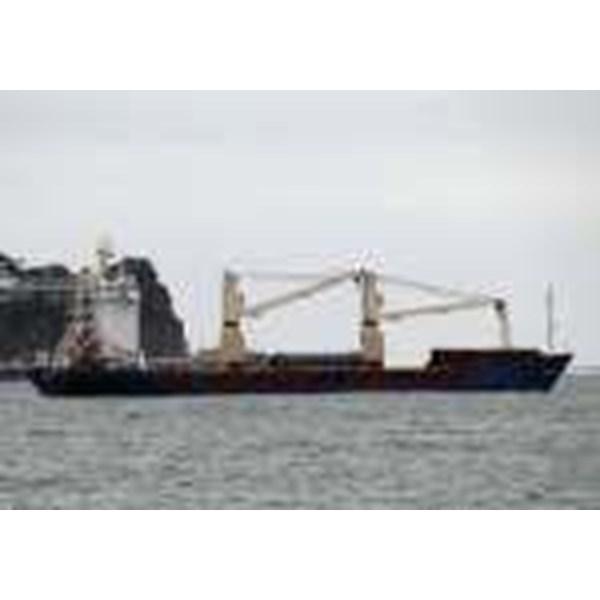 Container Ship BKI Class PGA-CJ082515
