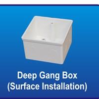 Deep Gang Box (Surface Installation) PVC Conduit Merk Lesso
