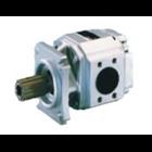 Internal Gear Pumps 1