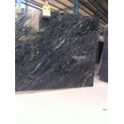 Black Amedeus 3
