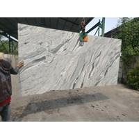 Distributor Bianco Amedeus 3