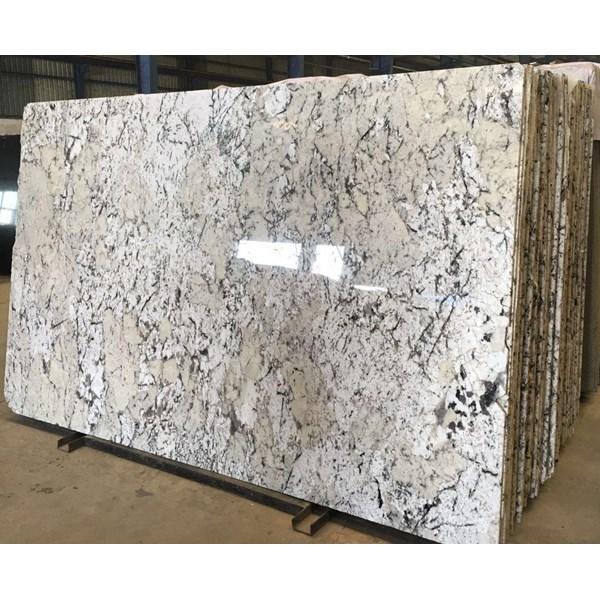 Granit White Exotica