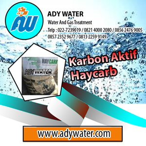 Haycarb Activated Carbon Msds - Ady Water