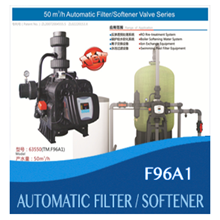Automatic Filter Softener Valve ( TM.F96A1)