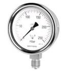 Capsule Pressure Gauge BDT9-18 1