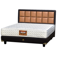 tempat tidur bigland Standard Plus 1