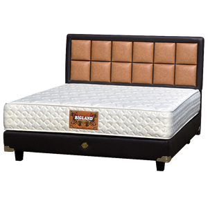 tempat tidur bigland Standard Plus