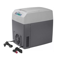 Cool Box Waico TC 21FL Electrical