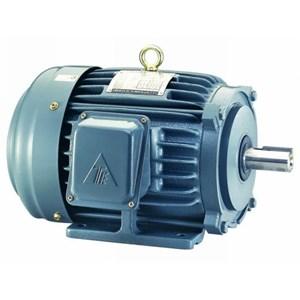 Dinamo Motor