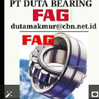Jual FAG BEARING PT DUTA BEARING GLODOK JAKARTA - FAG BEARING BALL ROLLER FAG PILLOW BLOCK FAG JAKARTA 2