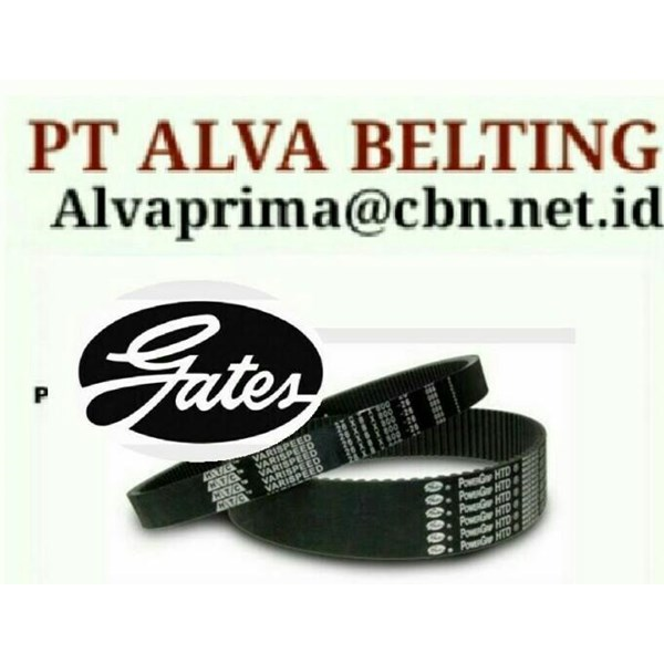 Belt Machine Powergrip HDT