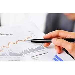 Jasa Audit Laporan Keuangan By Drs. Selamat, Ak., CPA & Partners