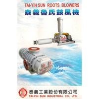 Roots Blower 1