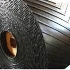 Conveyor belt sersan 2