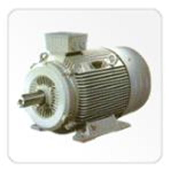 Electric Motor China Induction Motors (3 Phase)
