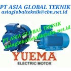 ELECTRIC MOTOR YUEMA 2
