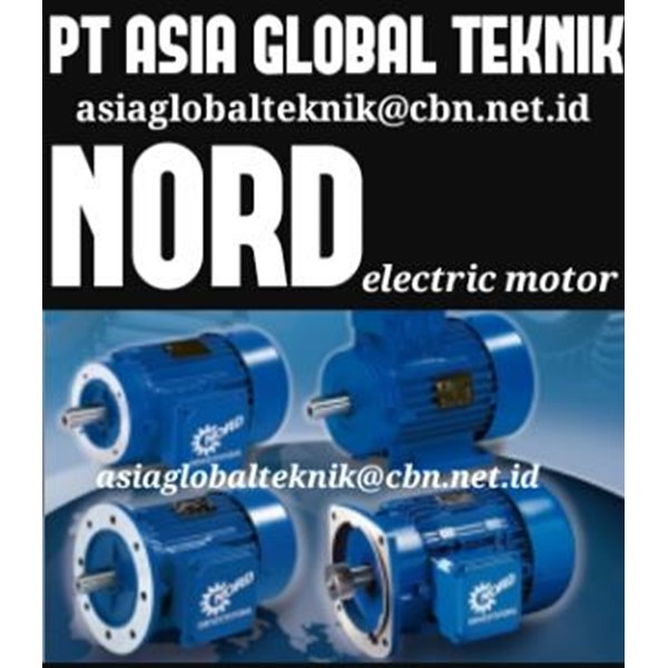 ELECTRIC MOTOR NORD