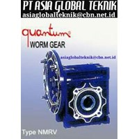Distributor QUANTUM WORM GEAR 3